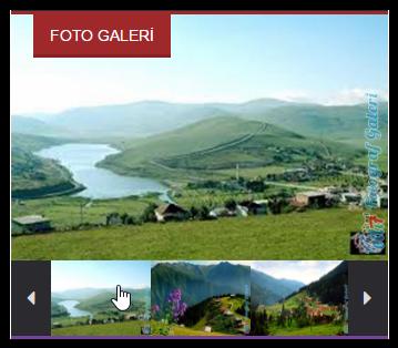 www.elli7.net/images/fusiontr/galeriwidget.png
